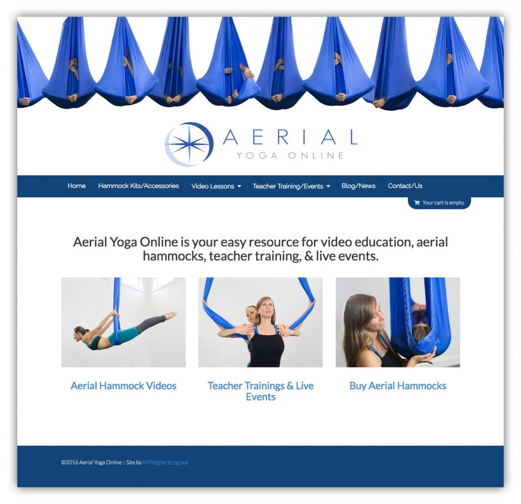 aerial yoga online   aerial yoga fitness  u0026 acrobatics teacher training and classes aerial yoga online   aerial yoga fitness  u0026 acrobatics teacher      rh   aerialyogaonline